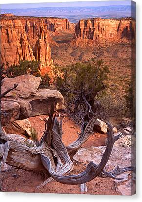 Overhang Canvas Print - On The Edge by Ray Mathis