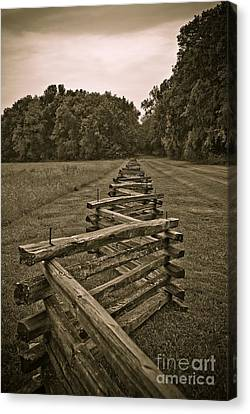 Fence Row Canvas Print - On The Fence by Charles Dobbs