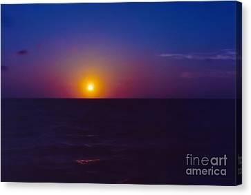 On The Horizon Canvas Print by Anita Lewis