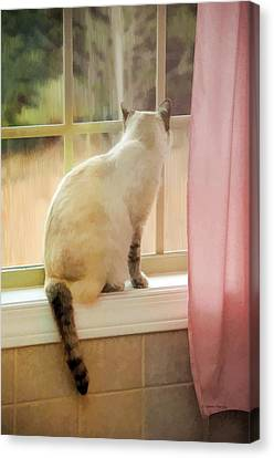 On The Inside Looking Out Canvas Print by Kenny Francis