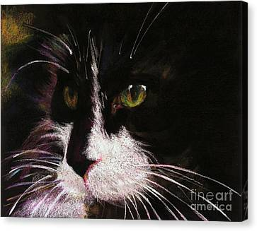 On The Lookout Canvas Print by Shelley Schoenherr