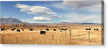 On The Open Lands Canvas Print