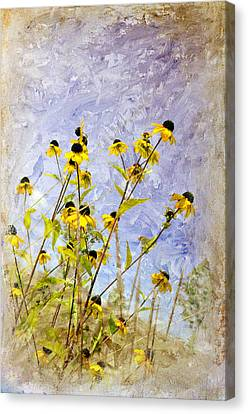 On The Prairie Canvas Print by Davina Washington