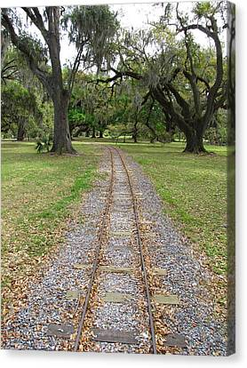 Canvas Print featuring the photograph On The Right Track by Beth Vincent