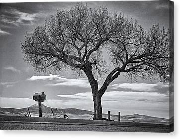 On The Road To Taos Canvas Print