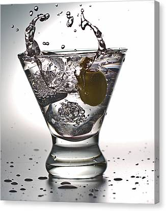 On The Rocks With Olive Splash Canvas Print by John Hoey