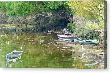 On The Suir Canvas Print
