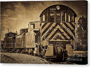 On The Tracks... Take Two. Canvas Print by Peggy Hughes