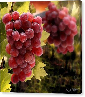 On The Vine Canvas Print by Cole Black