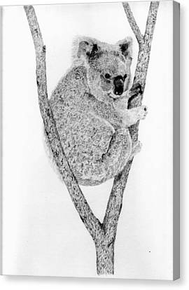 Koala Canvas Print - On The Watch by Wendy Brunell