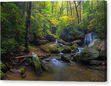 On The Way To Catawba Falls Canvas Print by Andres Leon