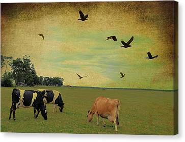 On This Green Earth Canvas Print by Jan Amiss Photography