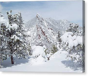 On Top Of Bear Peak Snow Mountain  Canvas Print