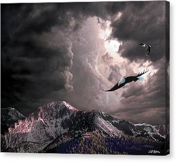 On Wings Of Eagles Canvas Print by Bill Stephens