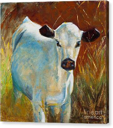 Cow Canvas Print - Once In A Blue Moon by Frances Marino