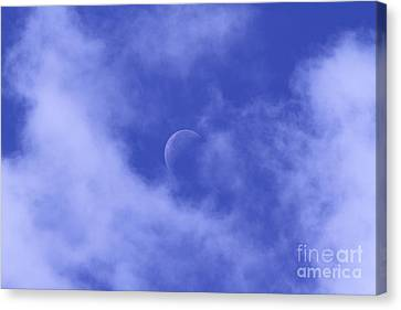 Canvas Print featuring the photograph Once In A Blue Moon by Judy Whitton