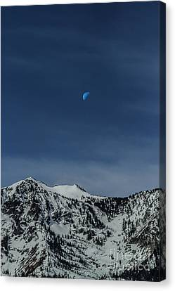 Once In A Blue Moon Canvas Print by Mitch Shindelbower