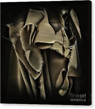 Once In A Torn Dream Canvas Print by Walt Foegelle