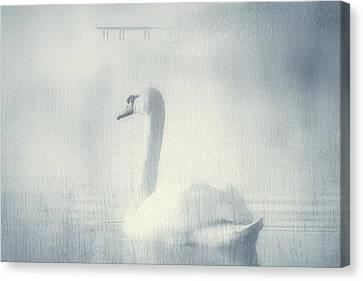 One Beautiful Moment Canvas Print by Georgiana Romanovna