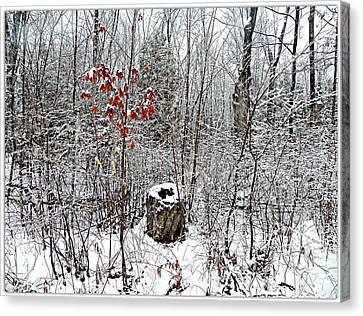 One Lone Log Canvas Print by Dianne  Lacourciere