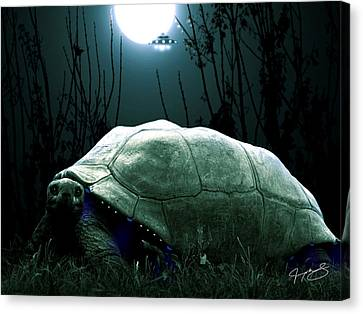 One Of The Ancient Ones Canvas Print