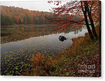 One Of The Worcester Ponds Canvas Print by Charles Kozierok