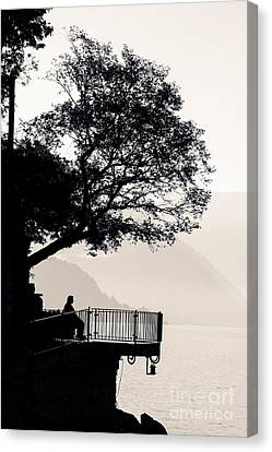 Overhang Canvas Print - One Old Man Sitting In Shade Of Tree Overlooking Lake Como by Peter Noyce