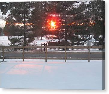 One Rare Winter Sunset Canvas Print by Tina M Wenger