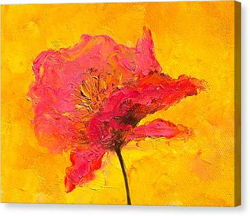 One Red Poppy Canvas Print by Jan Matson