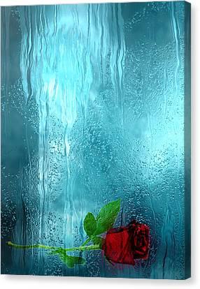 Analog Canvas Print - One Rose Left by Jack Zulli