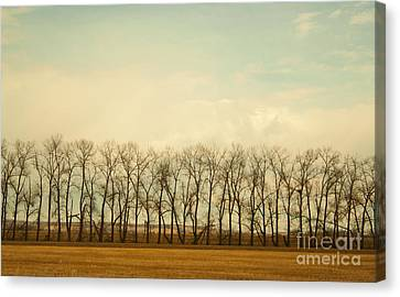 One Season Canvas Print