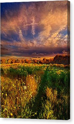 One Step At A Time Canvas Print by Phil Koch