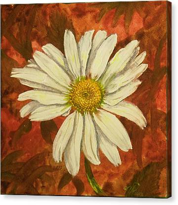 One Yorktown Daisy Canvas Print