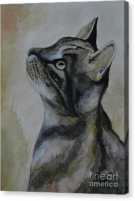 ONI Canvas Print by Suzette Kallen