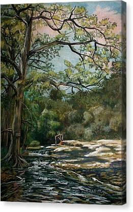 Onion Creek Tx Canvas Print by Dan Terry