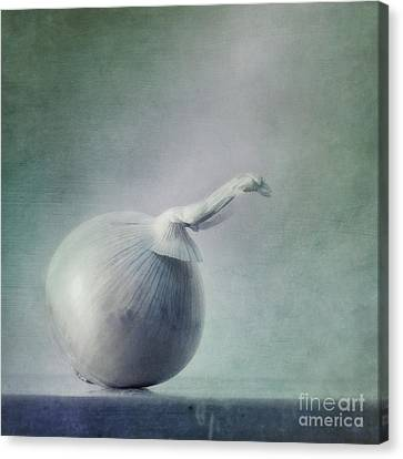 Onion Canvas Print by Priska Wettstein