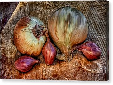 Onions And Scallions Canvas Print by Sharon Beth