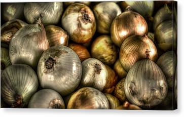 Onions Canvas Print by David Morefield