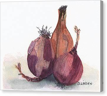 Onions Canvas Print by Sandy Linden