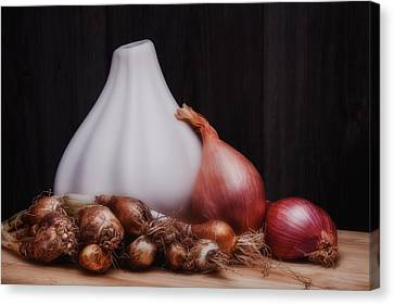 Onions Canvas Print by Tom Mc Nemar