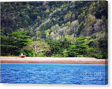 Canvas Print featuring the photograph Only By Boat by Rafael Quirindongo
