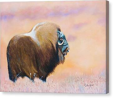 Oomingmak. Canvas Print by Jean Yves Crispo