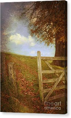Open Country Gate Canvas Print by Amanda Elwell
