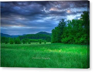 Open Pasture Canvas Print by Paul Herrmann