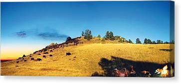 Open Range Canvas Print by Ric Soulen