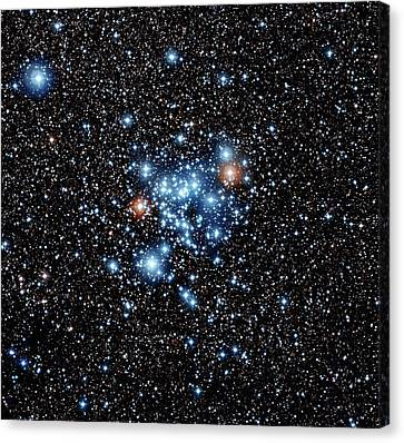 Open Star Cluster Ngc 3766 Canvas Print by European Southern Observatory