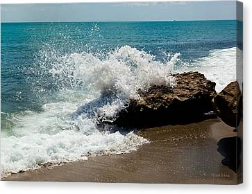 Opposing Forces Canvas Print - Opposing Forces by Michelle Wiarda-Constantine