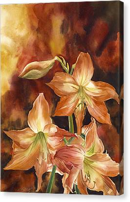 Orange Amaryllis Canvas Print by Alfred Ng