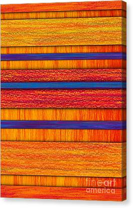 Orange And Blueberry Bars Canvas Print by David K Small