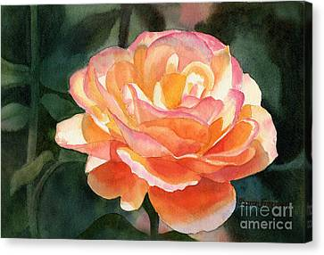 Close Up Canvas Print - Orange And Gold Rose by Sharon Freeman